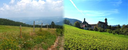 Black Forest photos